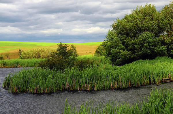 Brown County State Park Photograph - Creek On Farm In Palouse Area, Whitman by Michel Hersen