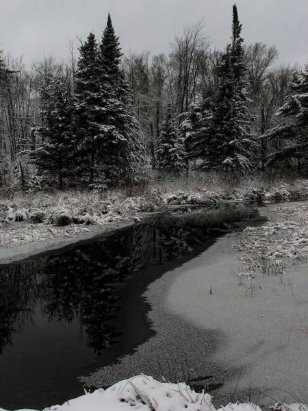 Photograph - Creek Reflections by Dale Kauzlaric