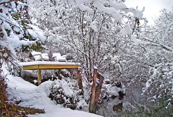 Photograph - Creekside In The Snow by Duane McCullough