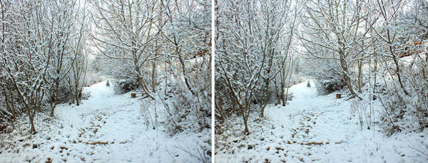 Photograph - Creekside Path In The Snow by Duane McCullough