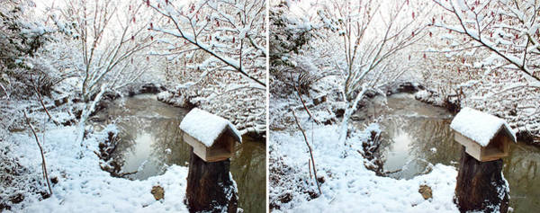 Photograph - Creekside Snow In Stereo by Duane McCullough
