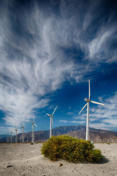 Photograph - Creosote And Wind Turbines by Scott Campbell