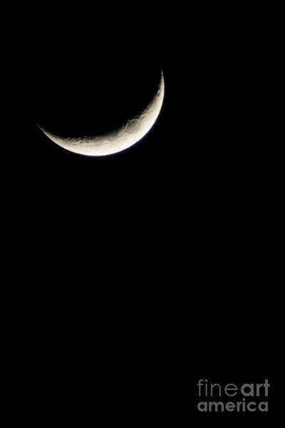 Sliver Photograph - Crescent Moon  by Thomas R Fletcher