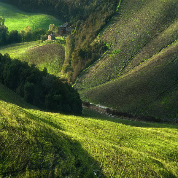Green Grass Photograph - Crete Senses/tuscany by Jarek Pawlak