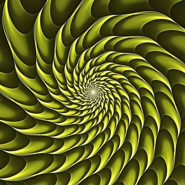 Digital Art - Cricca Nut Vortex Olive by Doug Morgan