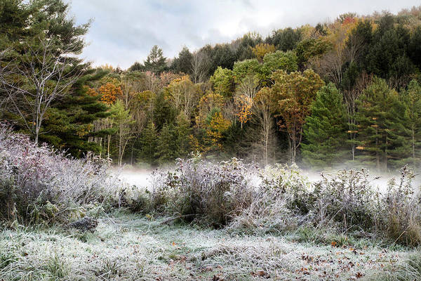 Photograph - Crisp Morning Frost Hillside Landscape by Christina Rollo