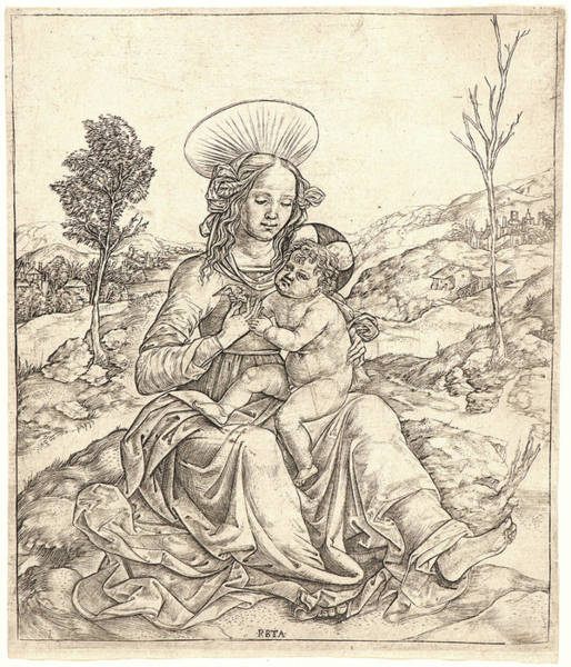 Wall Art - Drawing - Cristofano Robetta Italian, 1462 - Ca. 1535. The Virgin by Litz Collection