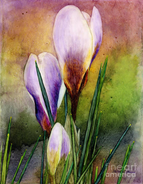 Delicate Painting - Crocus by Hailey E Herrera
