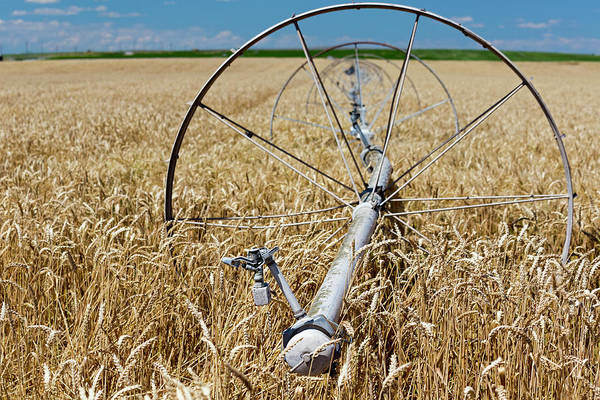 Wall Art - Photograph - Crop Irrigation by Jim West
