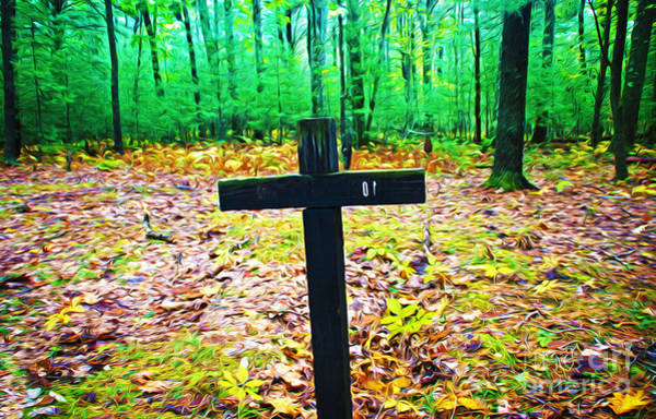 Allegheny Mountains Wall Art - Photograph - Cross In Woods by Laura D Young
