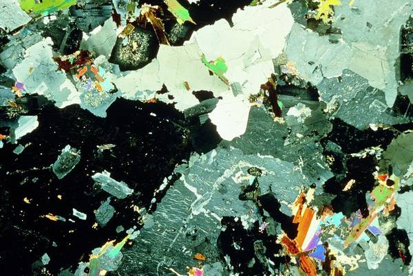 Quartz Photograph - Cross Polarised Lm Of Cornish Granite by Mike Mcnamee/science Photo Library