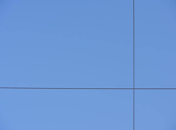 Photograph - Crossed Wires by Richard Reeve