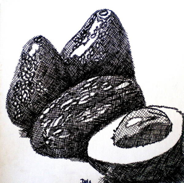 Ingredient Painting - Crosshatched Avocados by Debi Starr