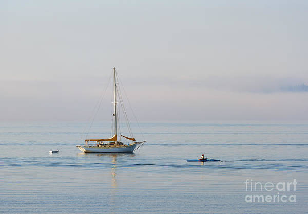 Port Townsend Photograph - Crossing Paths by Mike  Dawson