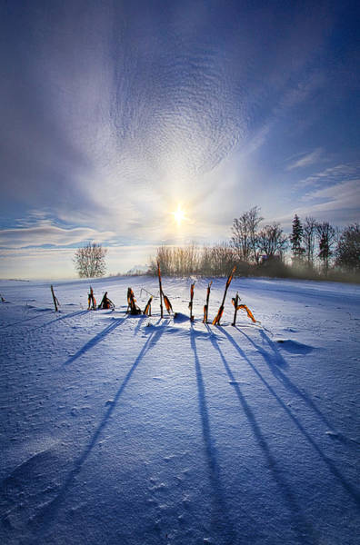 Stalk Photograph - Crossing The Divide by Phil Koch