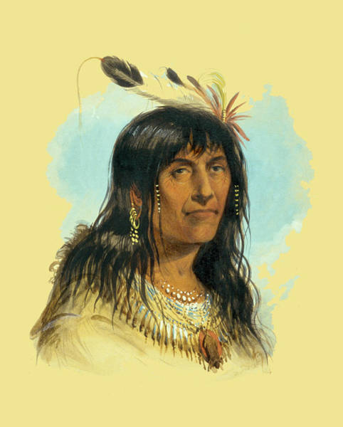 Horse Feathers Digital Art - Crow Chief Big Bowl by Alfred Jacob Miller