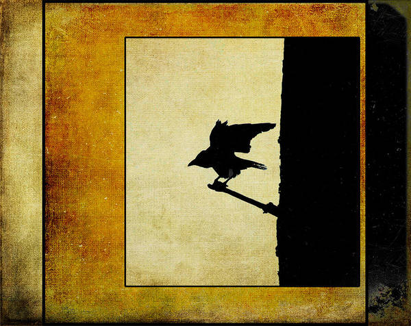 Photograph - Crow Landing by Randi Grace Nilsberg