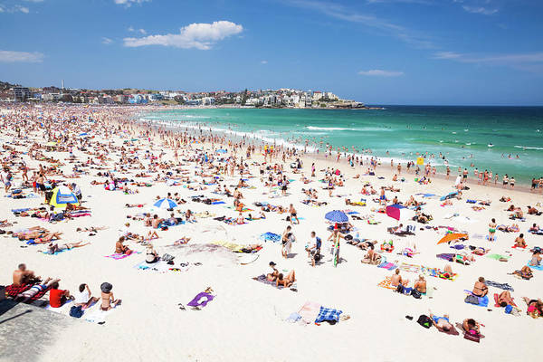 Water Photograph - Crowded Bondi Beach, Sydney, Australia by Matteo Colombo