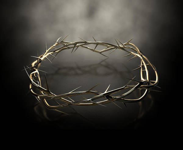 Crucifixion Digital Art - Crown Of Thorns Gold Casting by Allan Swart