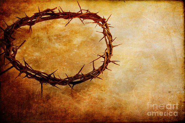 Crucifixion Of Jesus Photograph - Crown Of Thorns by Stephanie Frey