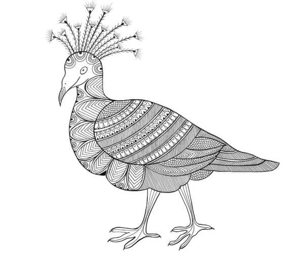 Adult Drawing - Crowned Pigeon by MGL Meiklejohn Graphics Licensing