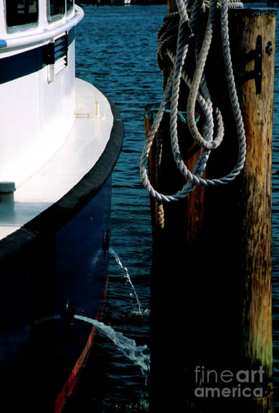 Photograph - Cruise Boat At Dock by William Kuta