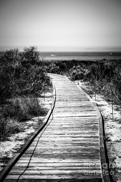Crystal Coast Photograph - Crystal Cove Wooden Walkway In Black And White by Paul Velgos