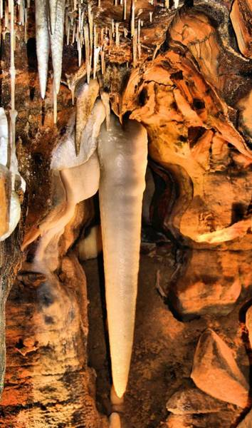 Stalagmite Photograph - Crystal King by Dan Sproul