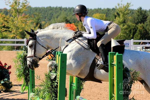 Photograph - Csjt-jumper10 by Janice Byer
