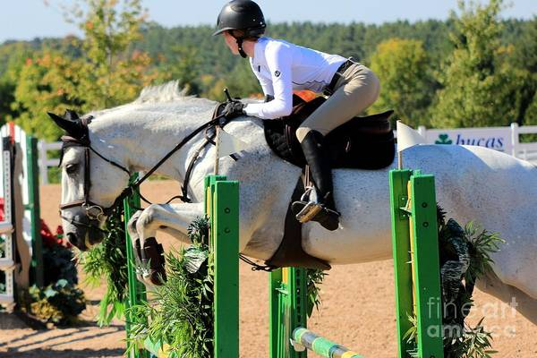 Photograph - Csjt-jumper13 by Janice Byer