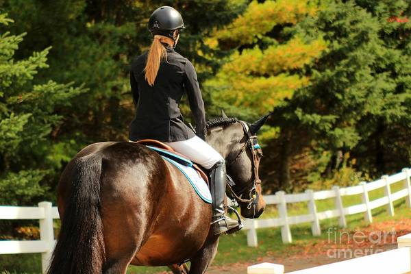 Photograph - Csjt-jumper58 by Janice Byer