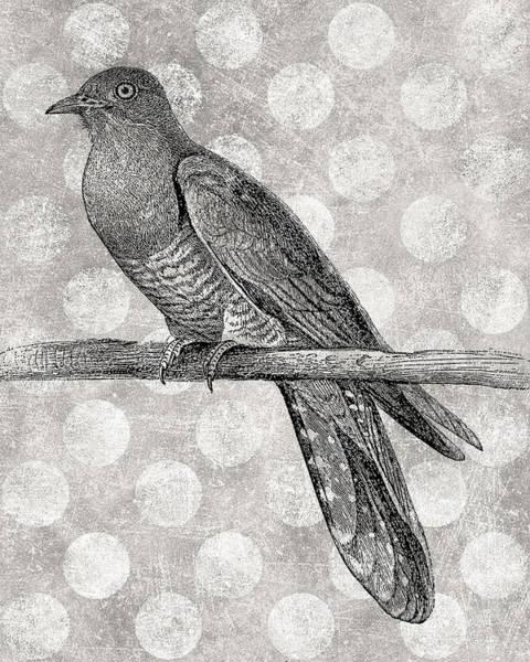 Wall Art - Digital Art - Gray Bird by Flo Karp