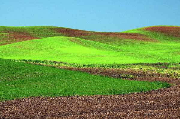 Brown County Photograph - Cultivation Patterns, Palouse, Whitman by Michel Hersen