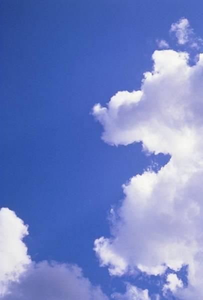 Cumulus Photograph - Cumulus Clouds by Jim Stevenson/science Photo Library