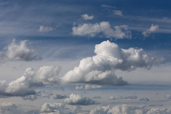 Photograph - Cumulus Sky by Paul Indigo