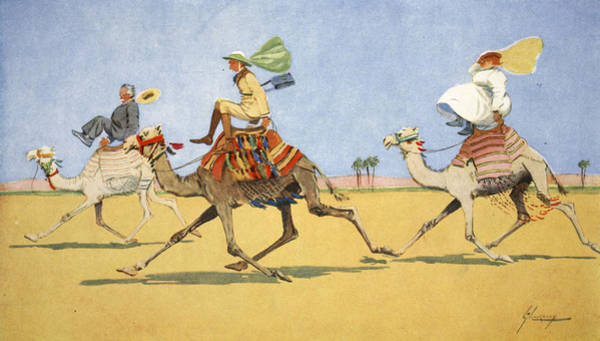 Egypt Drawing - Cup And Ball-the Camels Favourite Game by Lance Thackeray