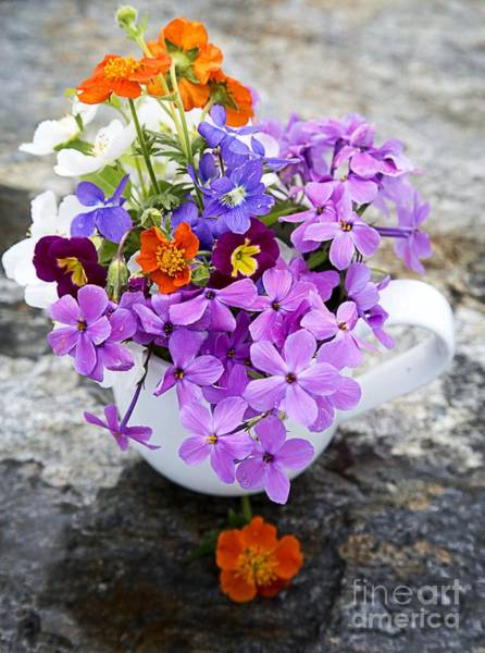 Wall Art - Photograph - Cup Full Of Wildflowers by Edward Fielding