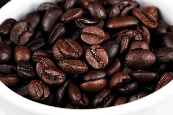 Photograph - Cup Of Beans by John Rizzuto