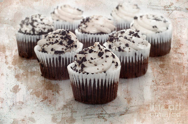 Photograph - Chocolate Cupcake Cuties Brown by Andee Design