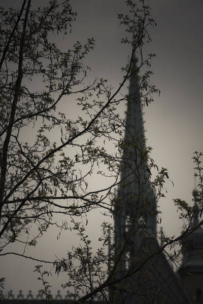 The Undead Photograph - Church Spire by Maria Heyens