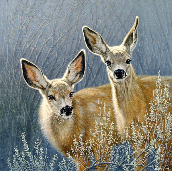 Deer Wall Art - Painting - Curious Pair by Paul Krapf