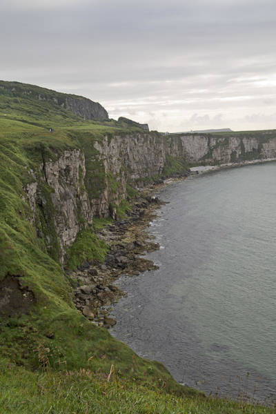 Wall Art - Photograph - Carrick-a-rede Cliffs by Betsy Knapp