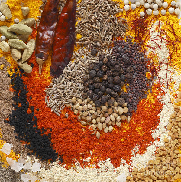 Photograph - Curry Spices by Paul Cowan