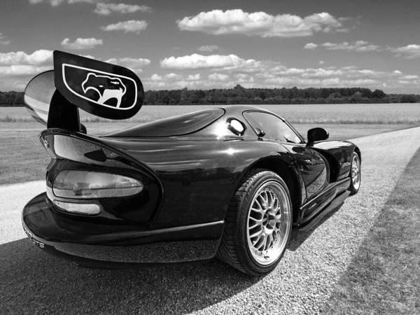 Photograph - Curvalicious Viper In Black And White by Gill Billington