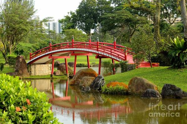 Curved Red Japanese Bridge And Stream Chinese Gardens Singapore Art Print