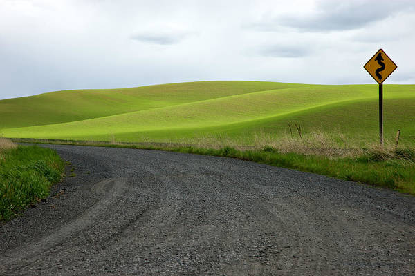 Photograph - Curves Ahead by Mary Lee Dereske