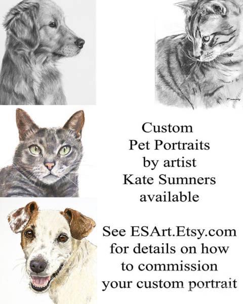 Painting - Custom Pet Portrait by Kate Sumners