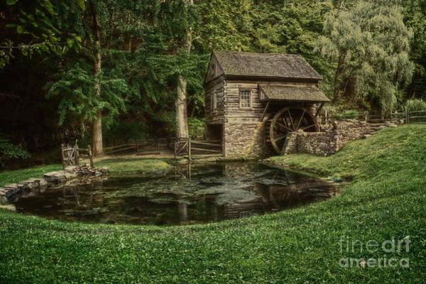 Photograph - Cuttalossa Farm In Summer I by Debra Fedchin