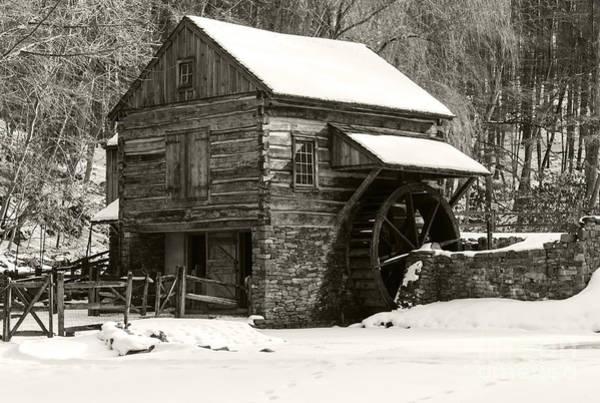 Photograph - Cuttalossa In Winter Iv by Debra Fedchin