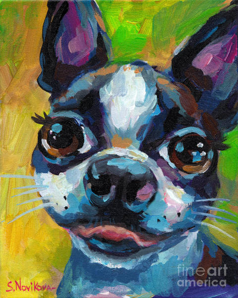 Wall Art - Painting - Cute Boston Terrier Puppy by Svetlana Novikova